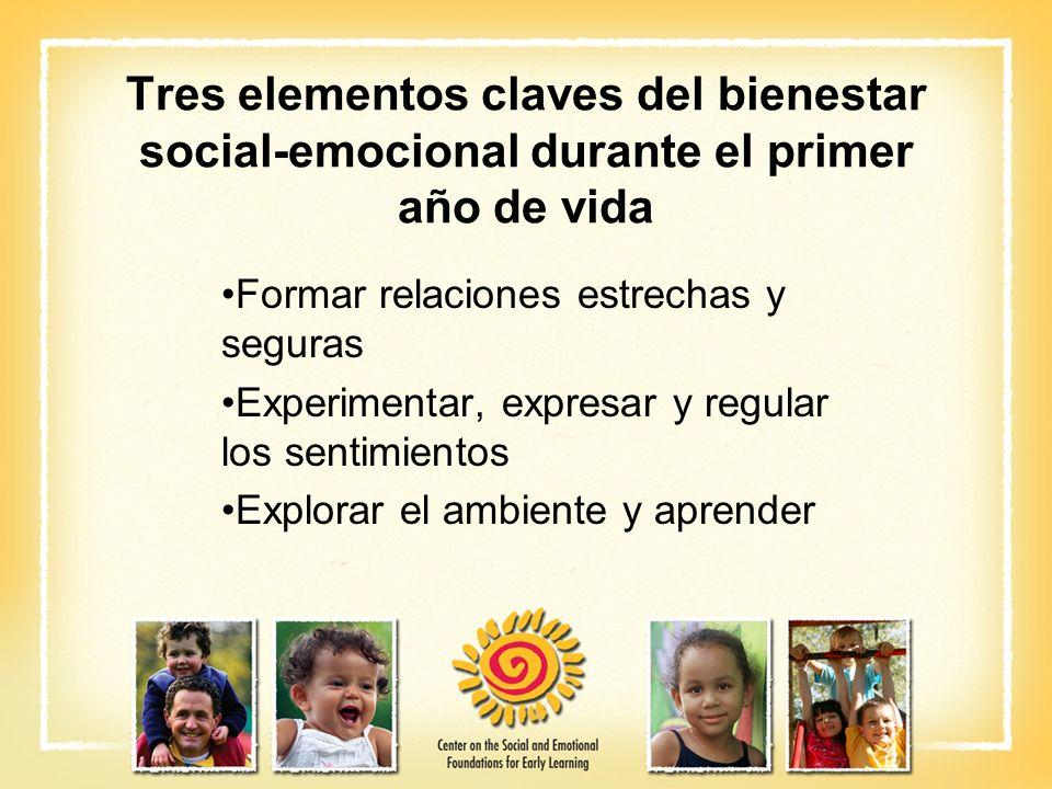 Tres elementos claves del bienestar social-emocional durante el primer año de vida