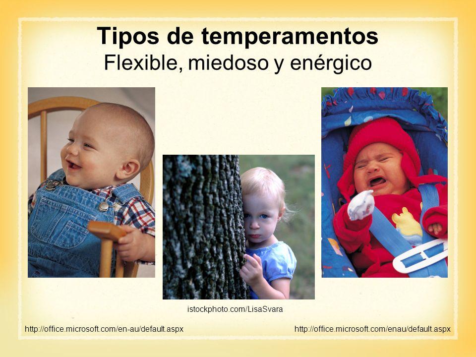 Tipos de temperamentos Flexible, miedoso y enérgico