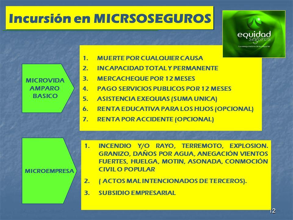 Incursión en MICRSOSEGUROS