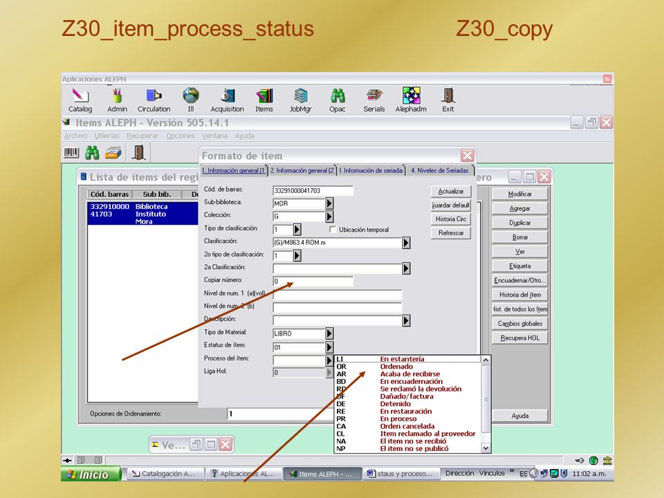 Z30_item_process_status Z30_copy