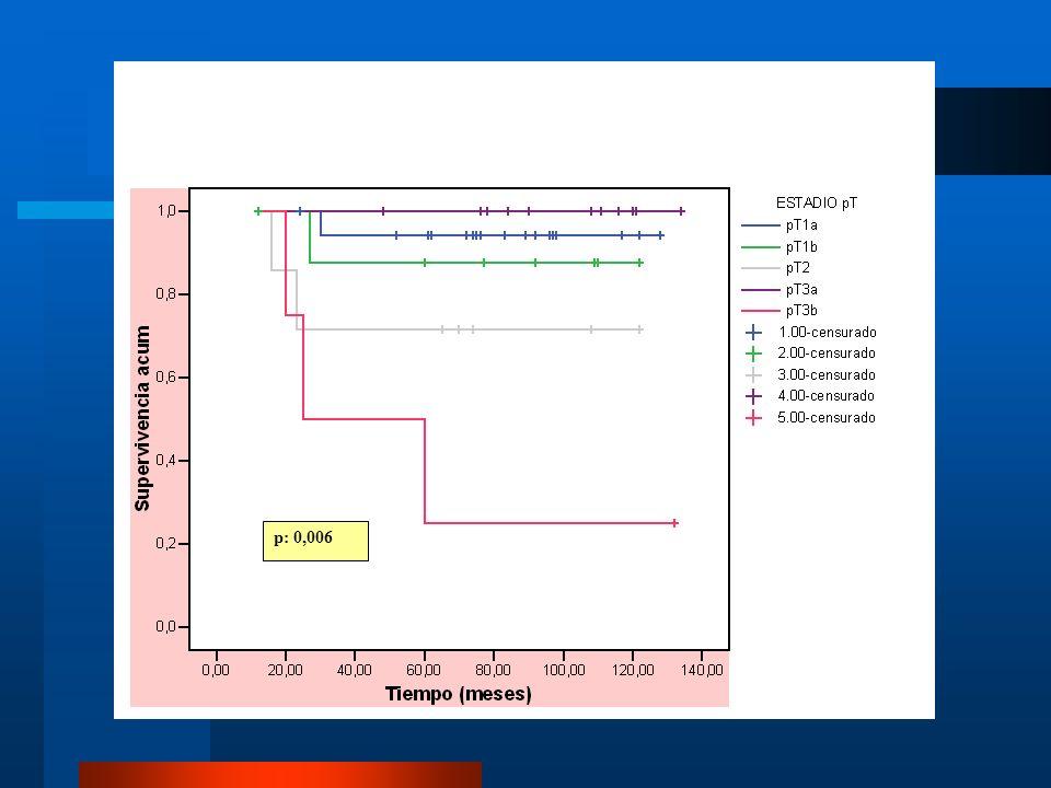 Curva de Kaplan-Meier se demuestra la disminucion de la supervivencia en estadios T avanzados a partir de los 2 años