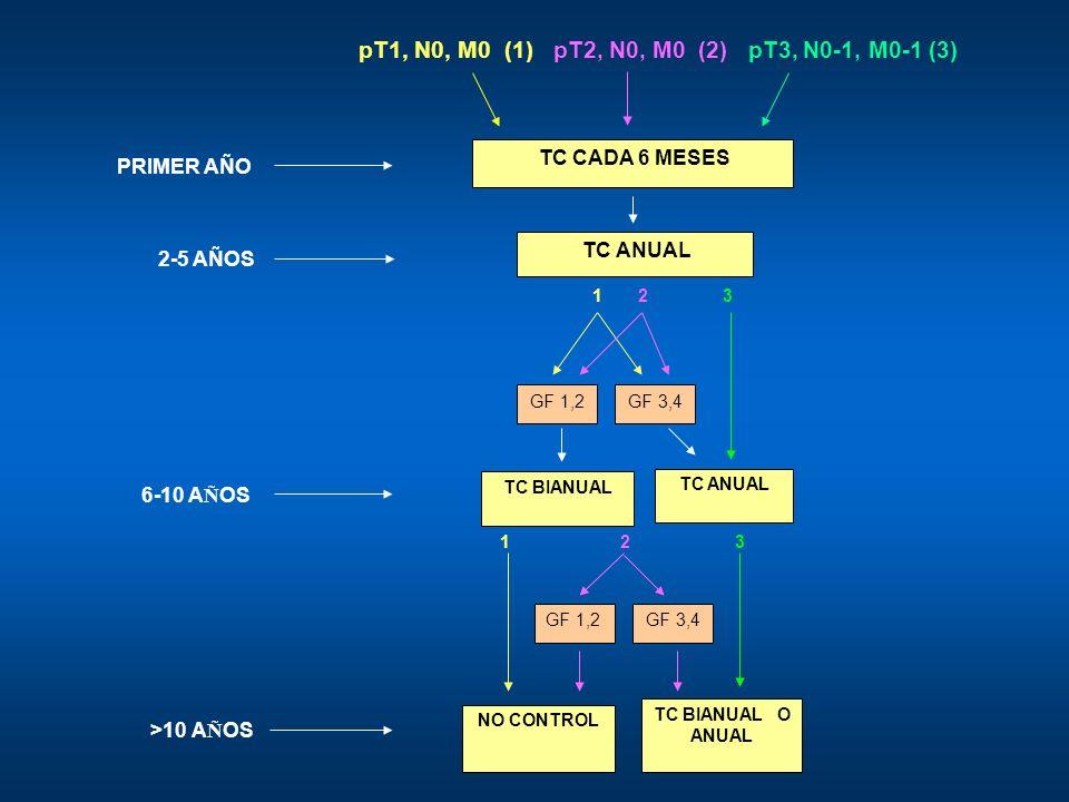 pT1, N0, M0 (1) pT2, N0, M0 (2) pT3, N0-1, M0-1 (3)