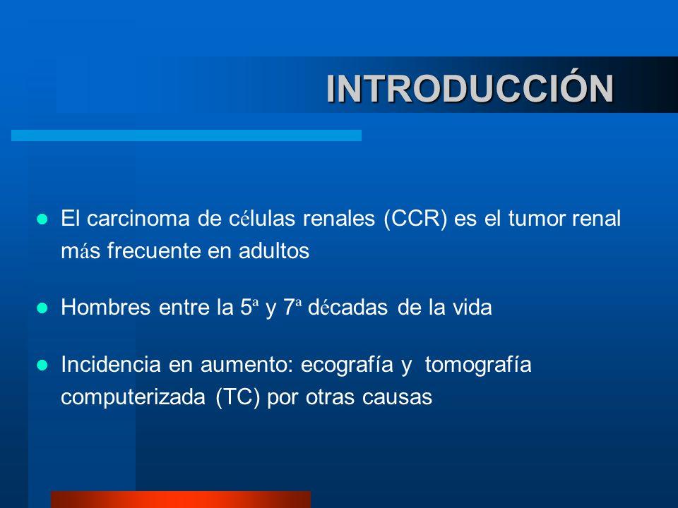INTRODUCCIÓN El carcinoma de células renales (CCR) es el tumor renal más frecuente en adultos. Hombres entre la 5ª y 7ª décadas de la vida.