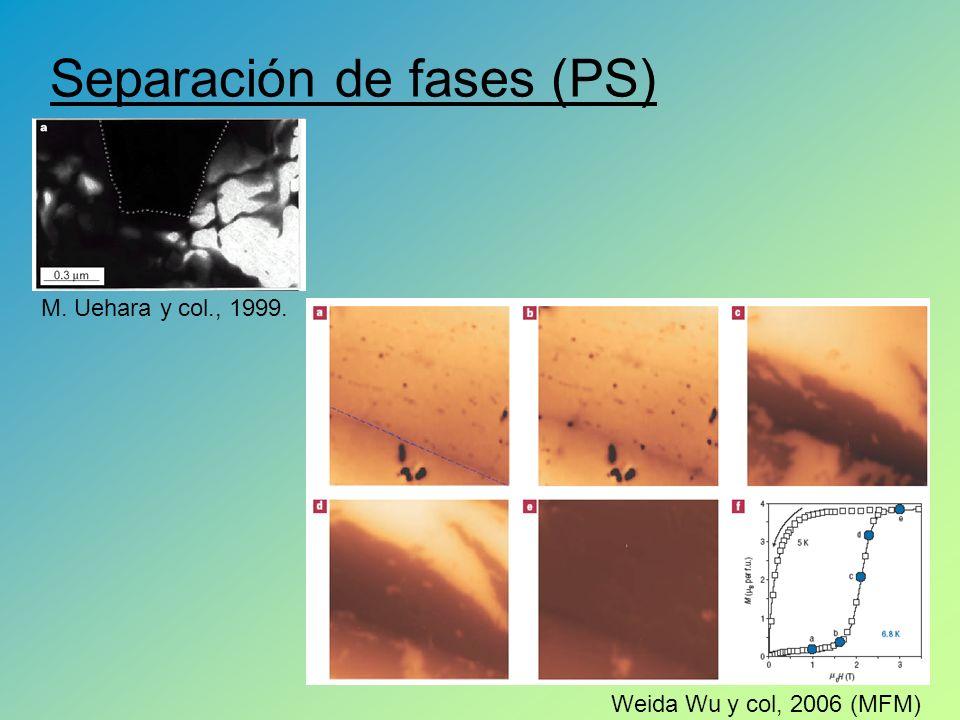 Separación de fases (PS)