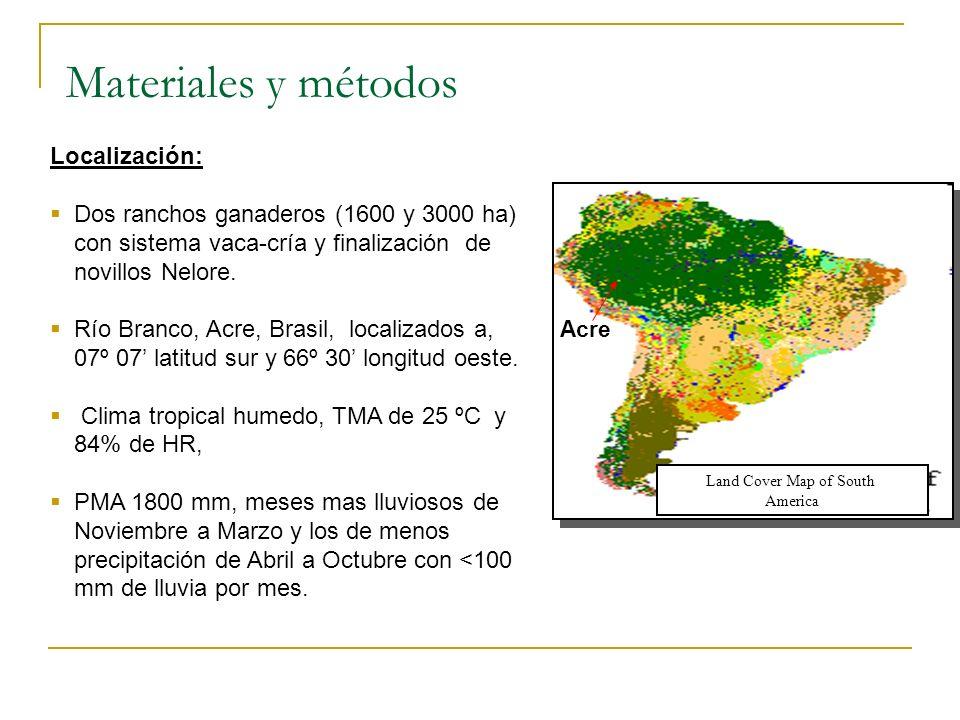 Materiales y métodos Localización: