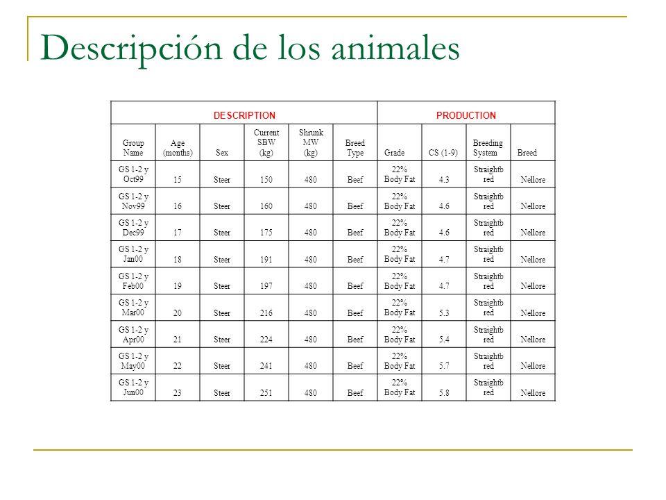 Descripción de los animales