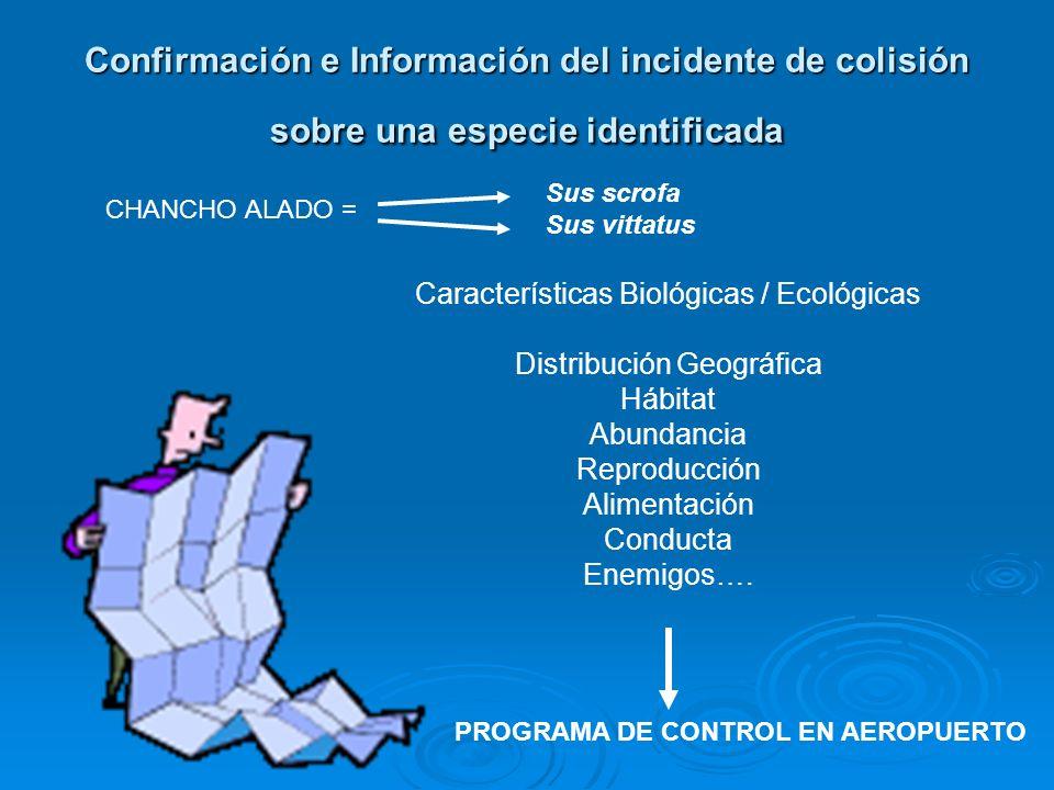 Confirmación e Información del incidente de colisión sobre una especie identificada