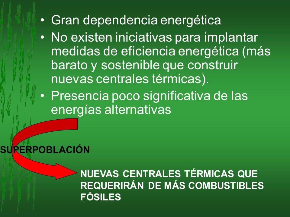 Gran dependencia energética