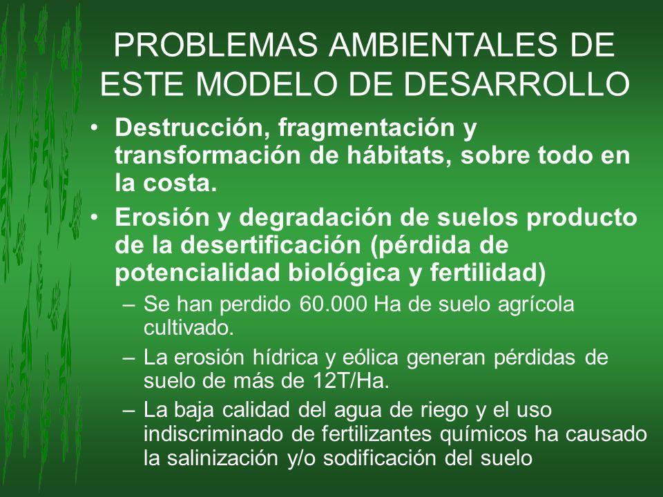 PROBLEMAS AMBIENTALES DE ESTE MODELO DE DESARROLLO