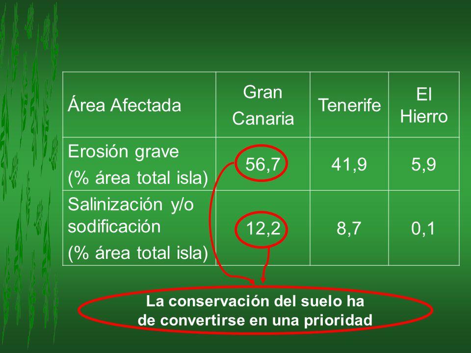 La conservación del suelo ha de convertirse en una prioridad