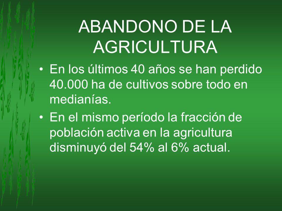 ABANDONO DE LA AGRICULTURA