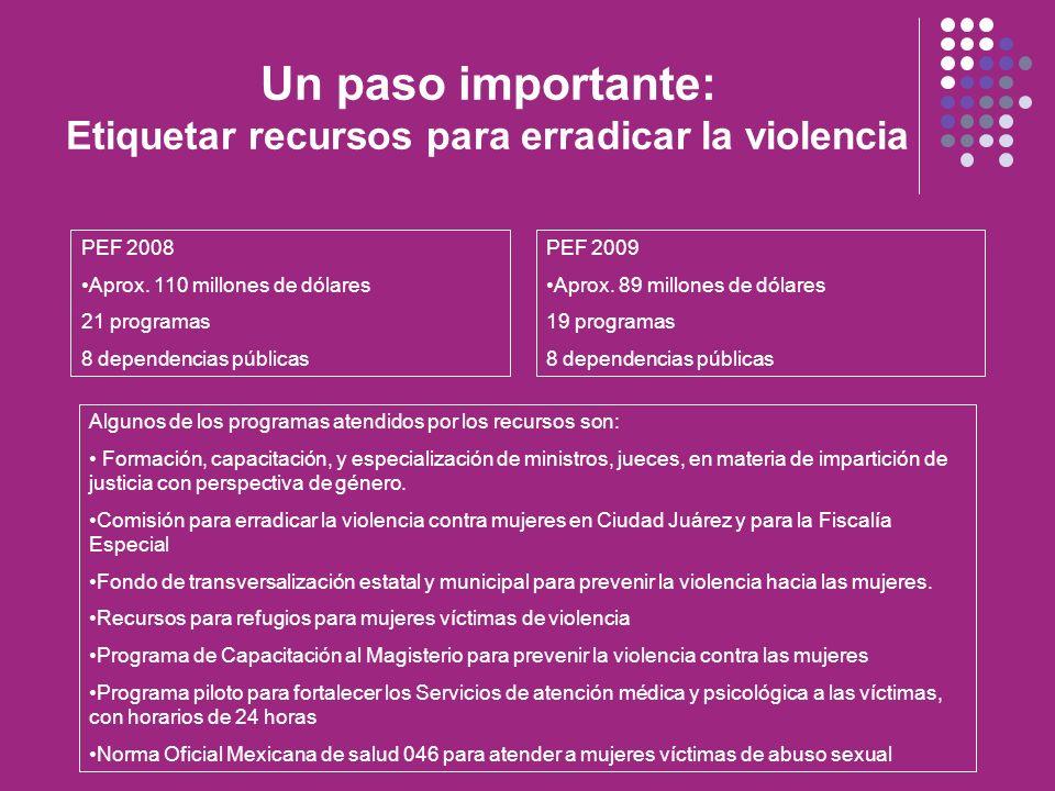 Un paso importante: Etiquetar recursos para erradicar la violencia