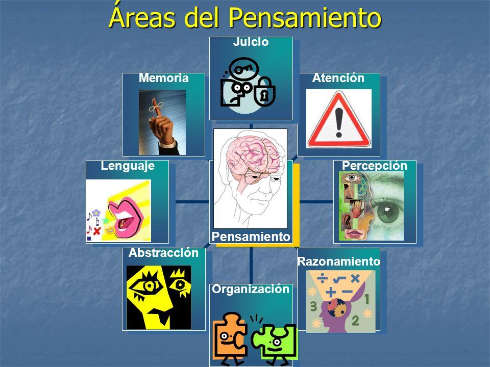 Áreas del Pensamiento Percepción: es la habilidad de que nuestra mente entienda la informacion que nuestros sentidos le envia.