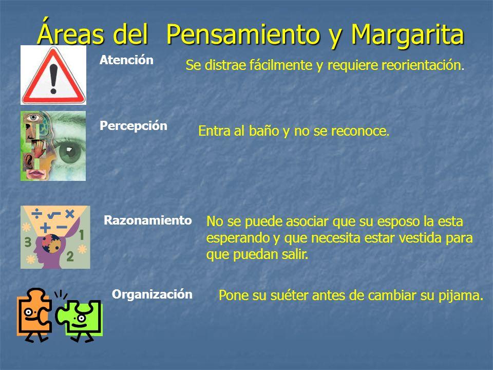 Áreas del Pensamiento y Margarita