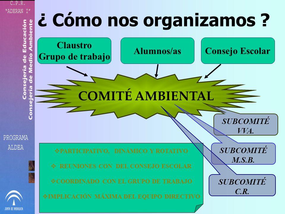 ¿ Cómo nos organizamos COMITÉ AMBIENTAL Claustro Grupo de trabajo