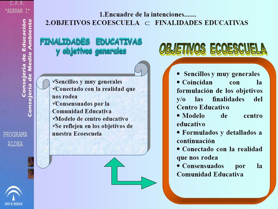 Encuadre de la intenciones....... FINALIDADES EDUCATIVAS