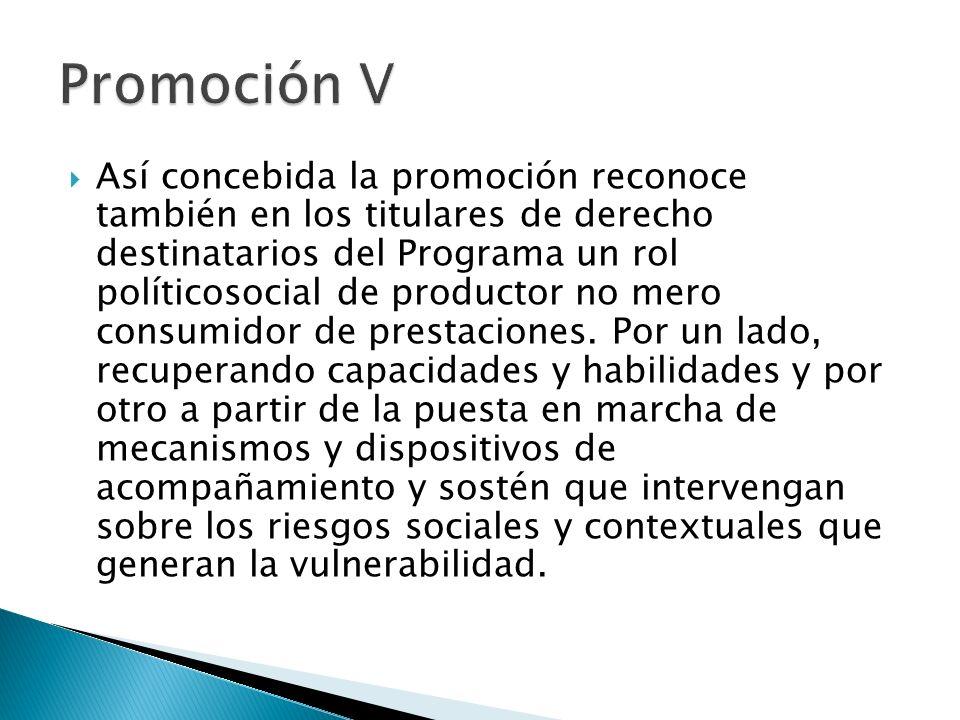 Promoción V
