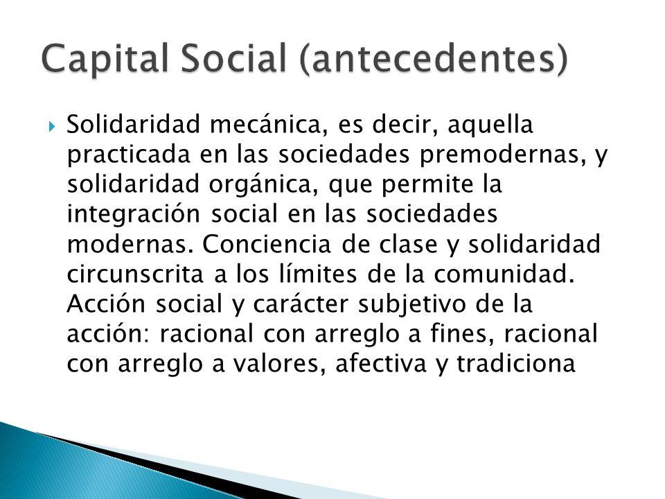Capital Social (antecedentes)