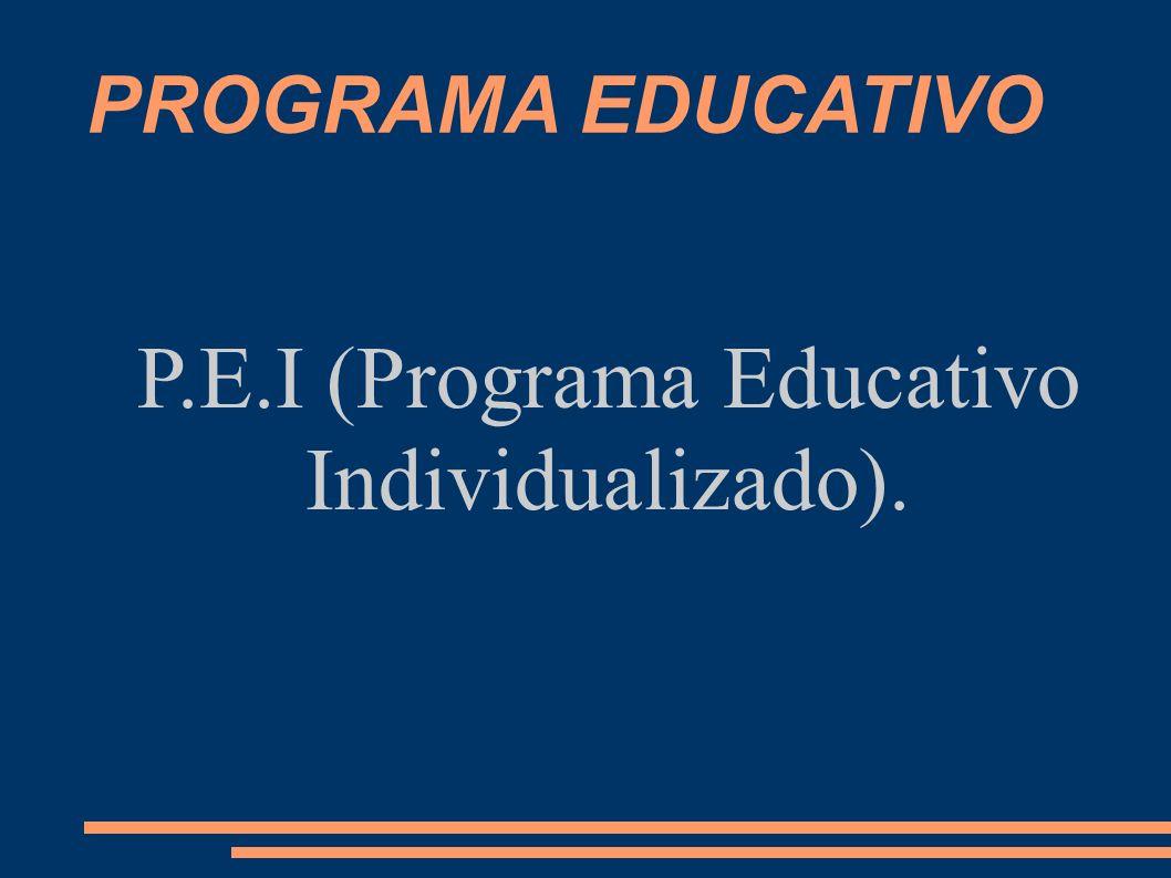 P.E.I (Programa Educativo Individualizado).