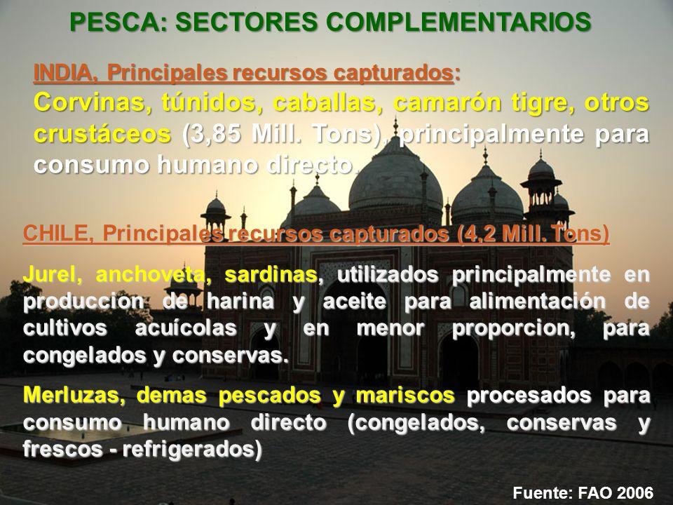 PESCA: SECTORES COMPLEMENTARIOS