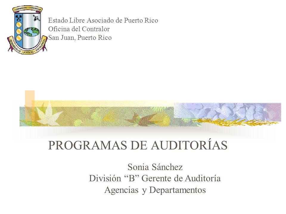 PROGRAMAS DE AUDITORÍAS