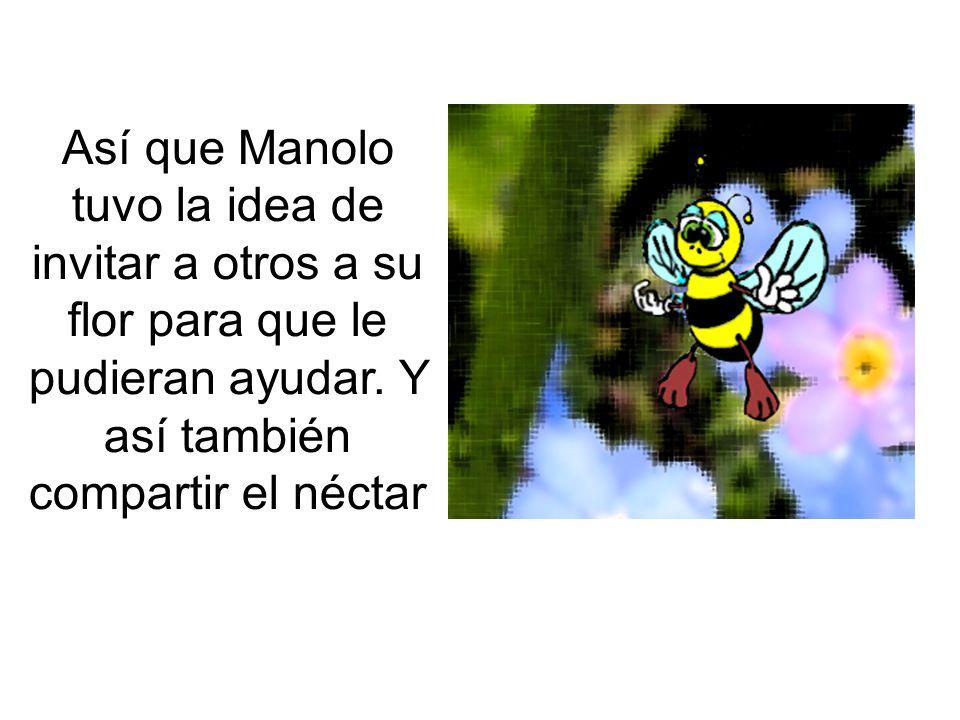 Así que Manolo tuvo la idea de invitar a otros a su flor para que le pudieran ayudar.