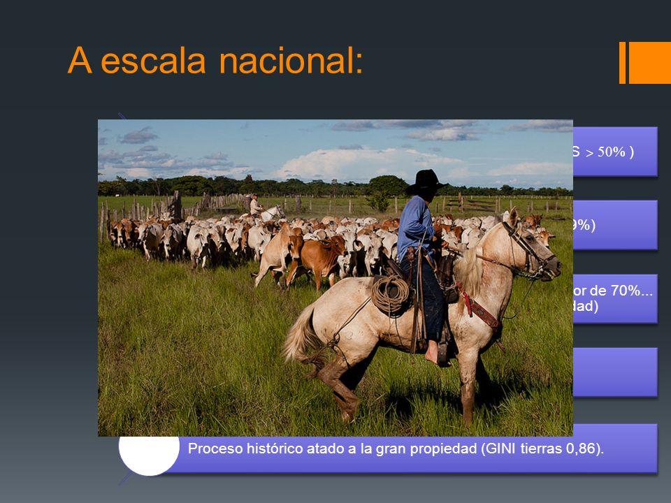 A escala nacional: Las emisiones son principalmente rurales (Agri. + USCUSS ˃ 50% ) Ganadería: principal actividad generadora de GEI (19%)