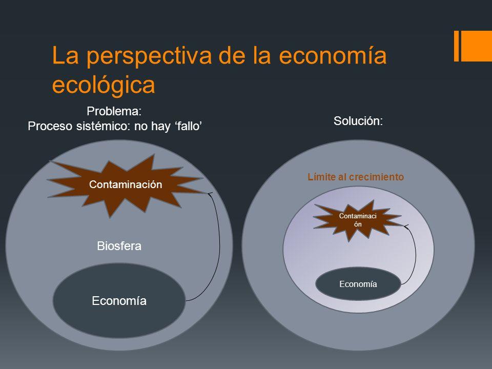 La perspectiva de la economía ecológica