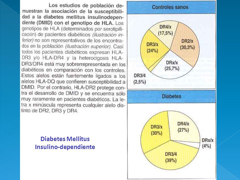 Insulino-dependiente
