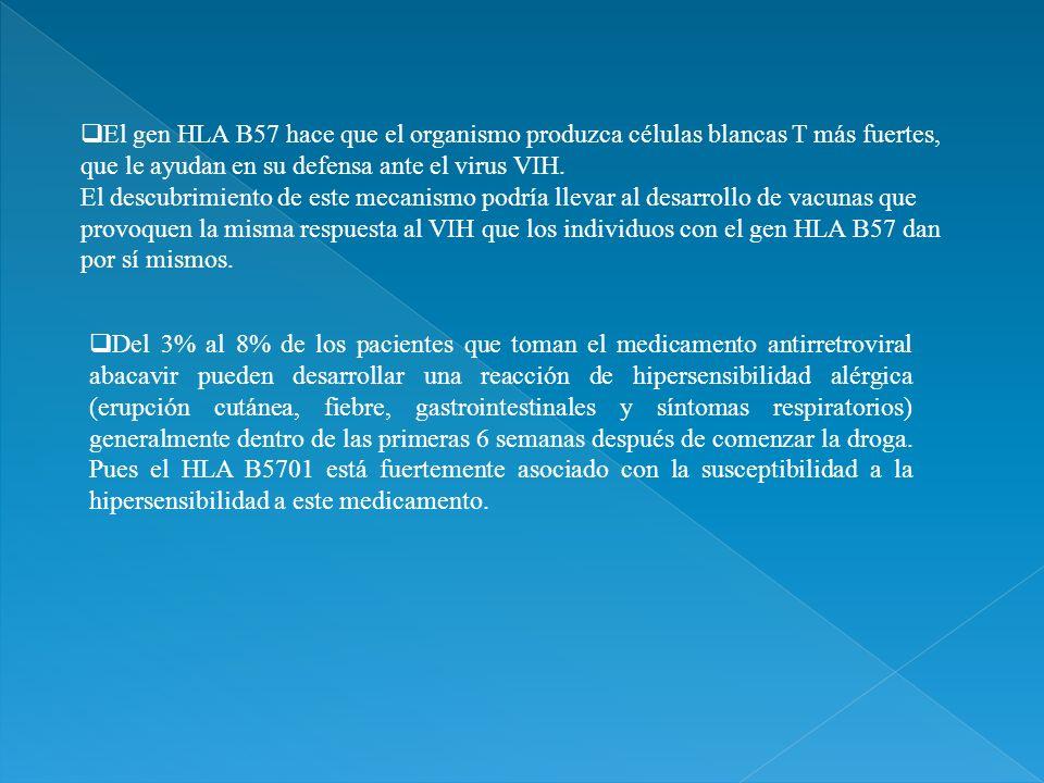 El gen HLA B57 hace que el organismo produzca células blancas T más fuertes, que le ayudan en su defensa ante el virus VIH. El descubrimiento de este mecanismo podría llevar al desarrollo de vacunas que provoquen la misma respuesta al VIH que los individuos con el gen HLA B57 dan por sí mismos.