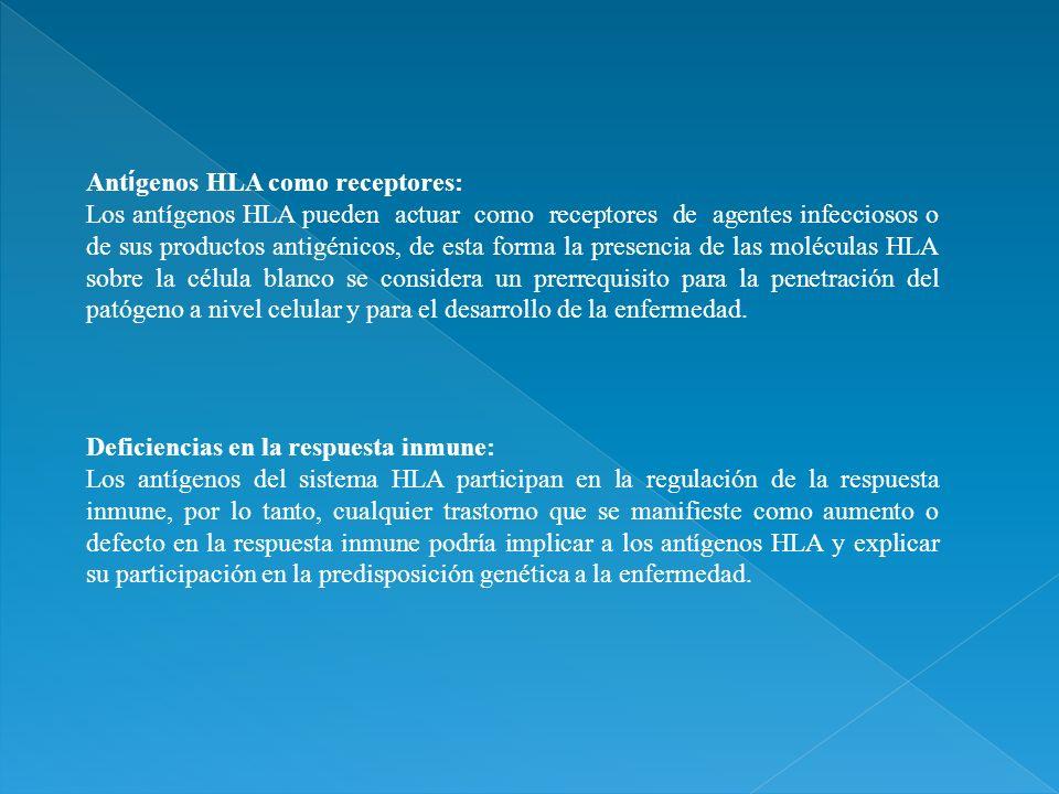 Antígenos HLA como receptores: