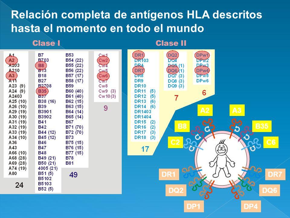 Relación completa de antígenos HLA descritos hasta el momento en todo el mundo