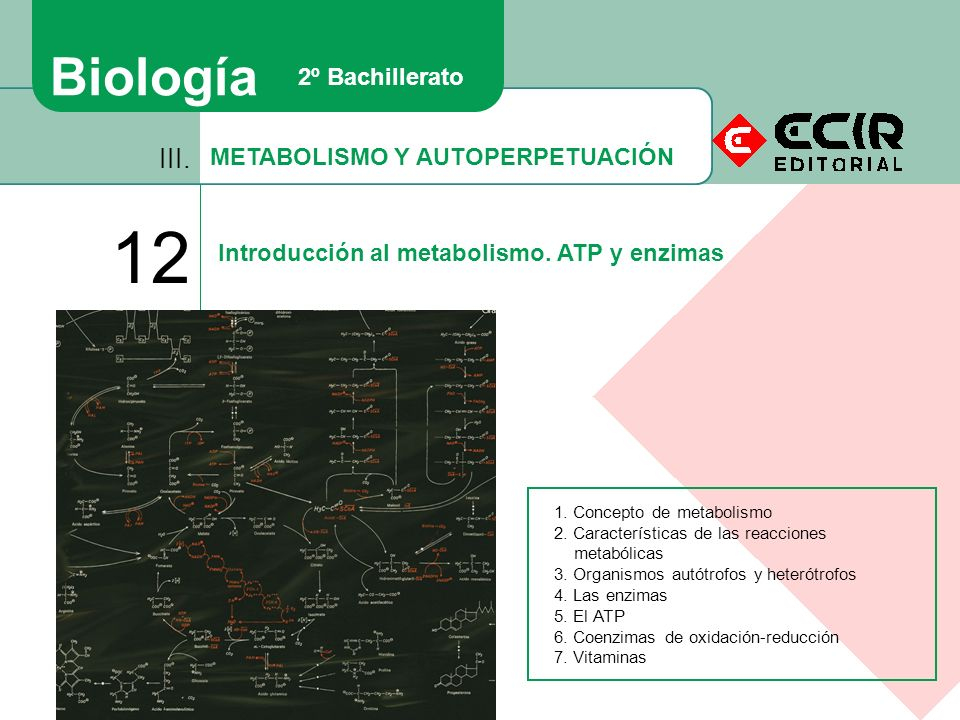 BIOLOGIA 3 BACHILLERATO PDF DOWNLOAD
