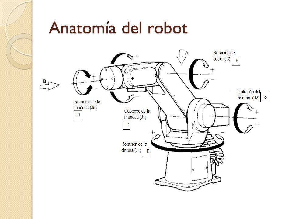 Anatomía del robot