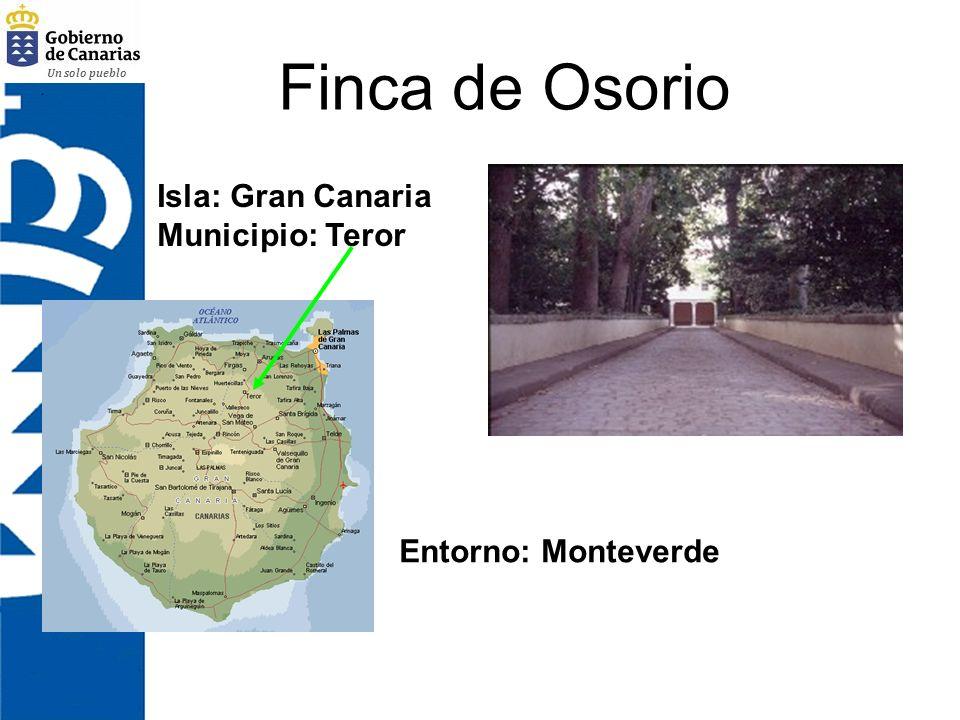 Finca de Osorio Isla: Gran Canaria Municipio: Teror