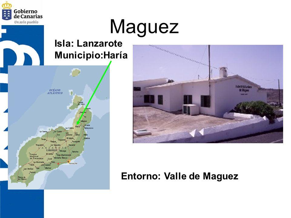 Maguez Isla: Lanzarote Municipio:Haría Entorno: Valle de Maguez