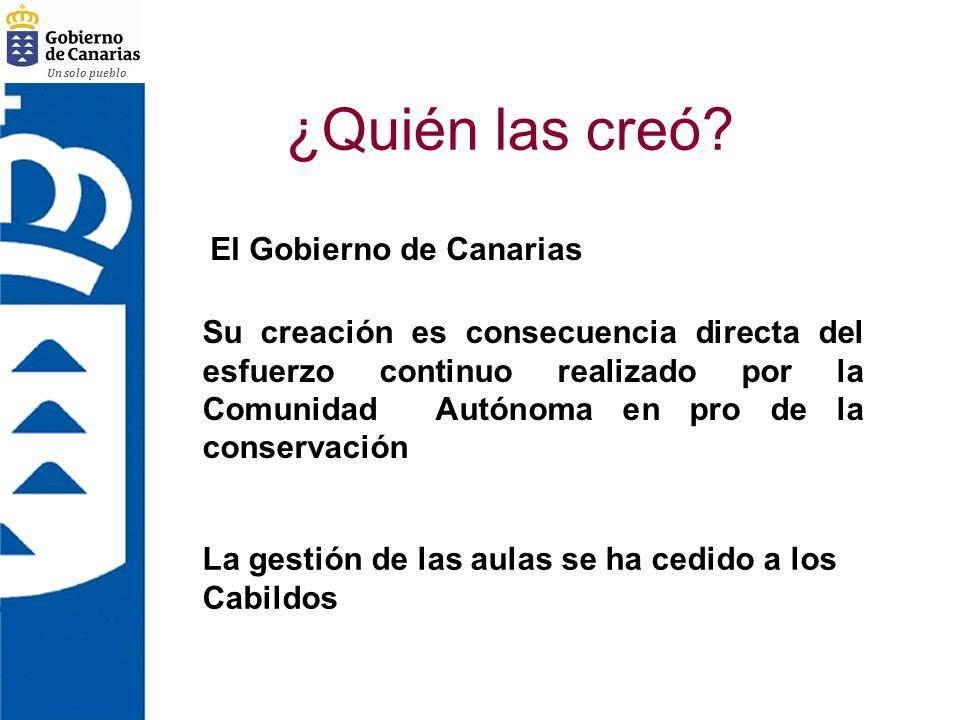 ¿Quién las creó El Gobierno de Canarias