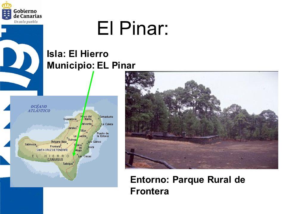 El Pinar: Isla: El Hierro Municipio: EL Pinar