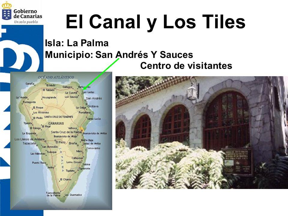 El Canal y Los Tiles Isla: La Palma Municipio: San Andrés Y Sauces