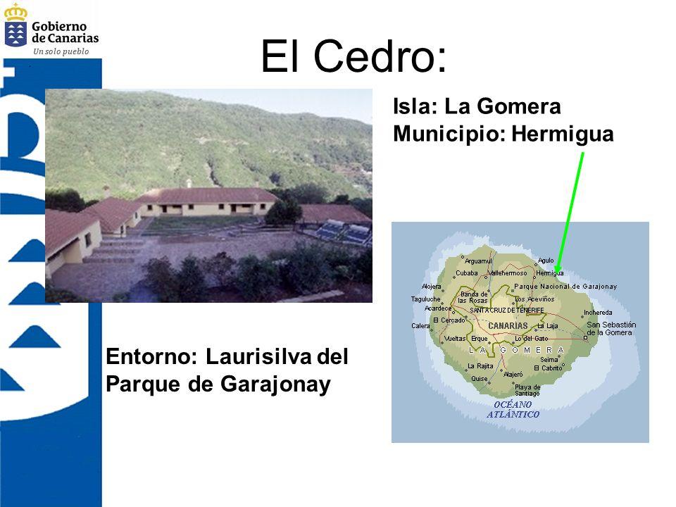El Cedro: Isla: La Gomera Municipio: Hermigua