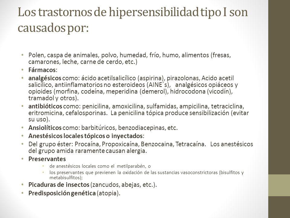 Los trastornos de hipersensibilidad tipo I son causados por: