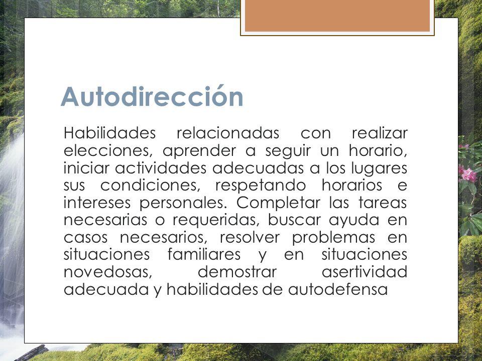 Autodirección