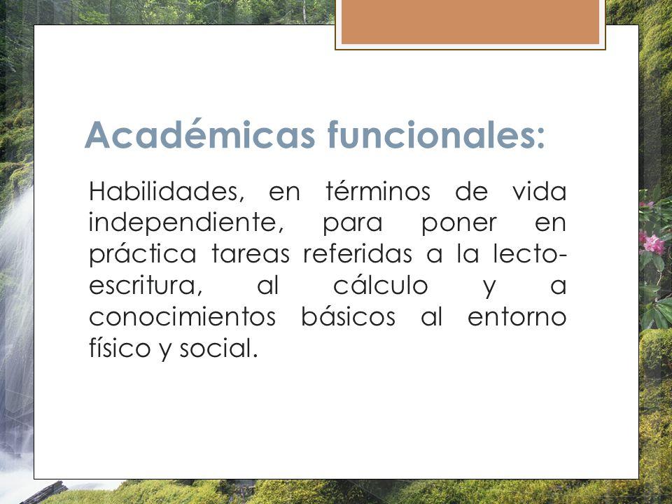 Académicas funcionales:
