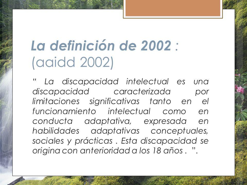 La definición de 2002 : (aaidd 2002)