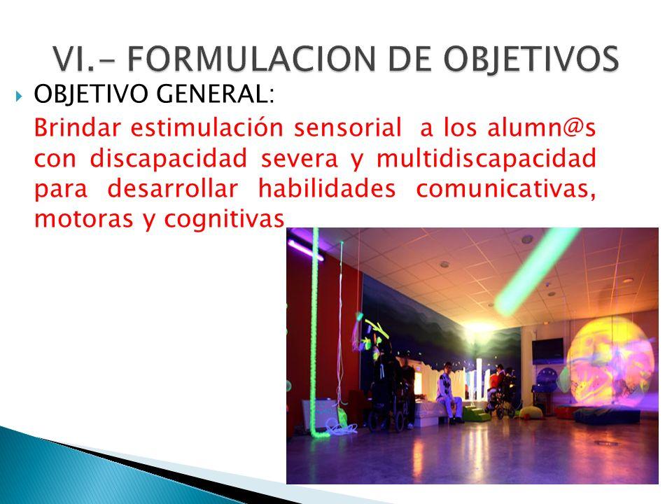 VI.- FORMULACION DE OBJETIVOS