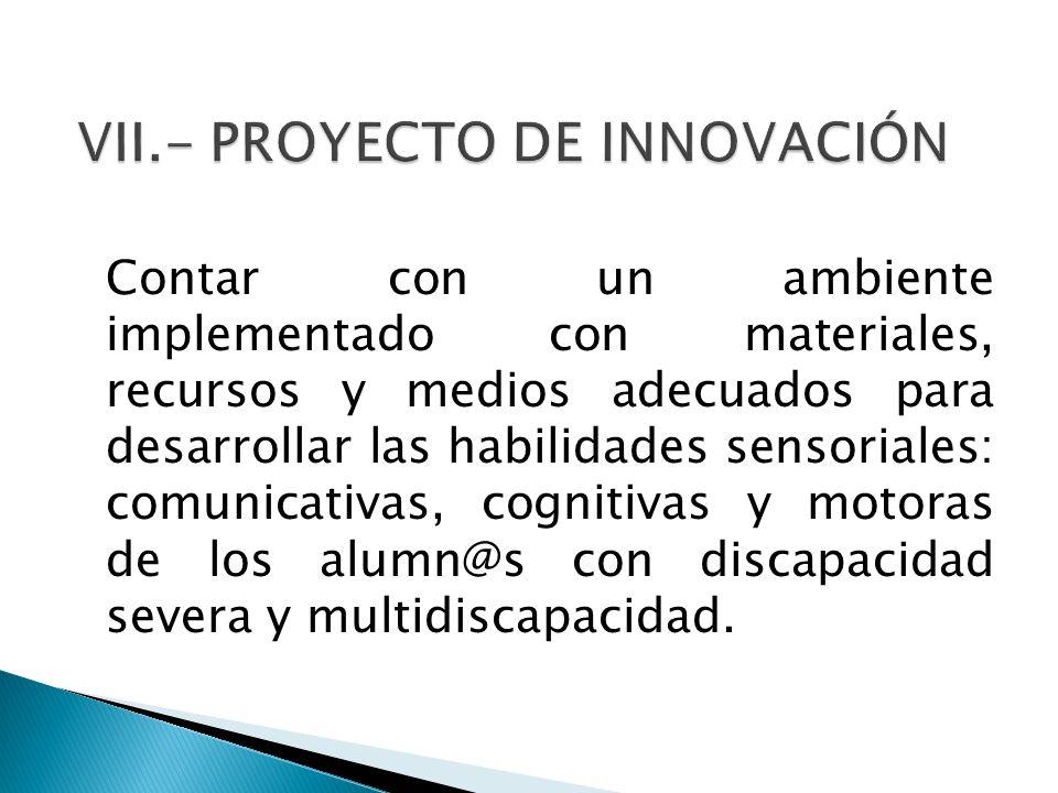 VII.- PROYECTO DE INNOVACIÓN