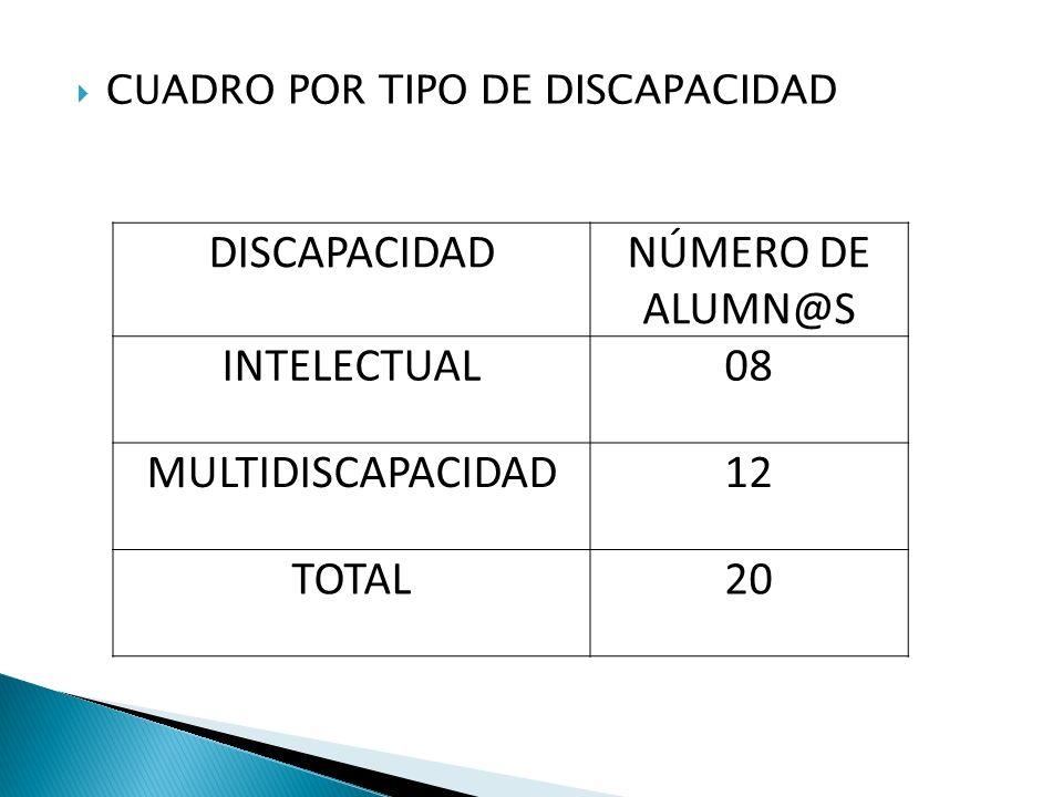DISCAPACIDAD NÚMERO DE ALUMN@S INTELECTUAL 08 MULTIDISCAPACIDAD 12