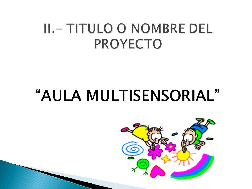 II.- TITULO O NOMBRE DEL PROYECTO