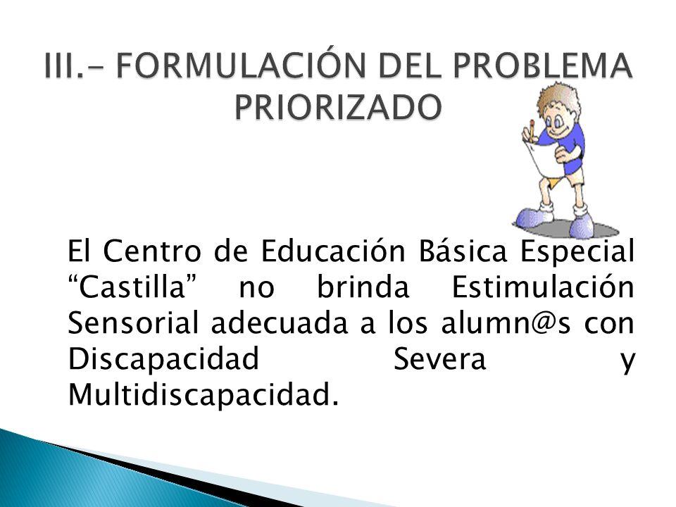 III.- FORMULACIÓN DEL PROBLEMA PRIORIZADO