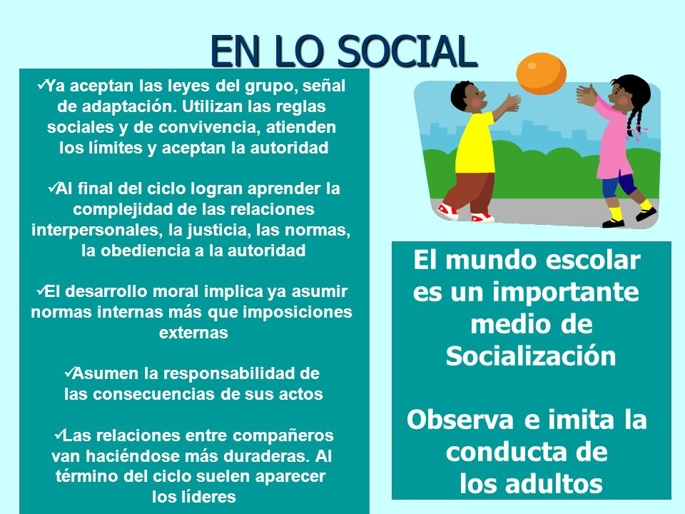 EN LO SOCIAL El mundo escolar es un importante medio de Socialización